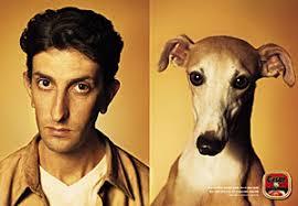 people look like dogs