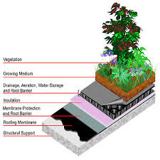green roof diagram
