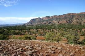 flinders rangers national park