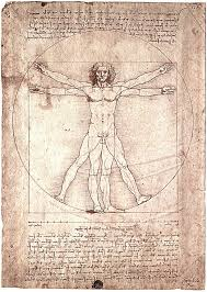 the vitruvian man leonardo da vinci