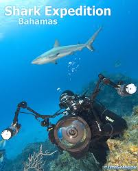 bahamas housing