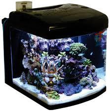 aquarium nano cube