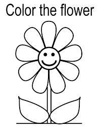 flower colorings
