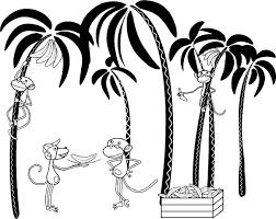 monkey habits