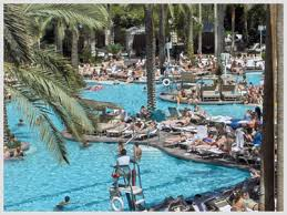 flamingo hotel las vegas pool