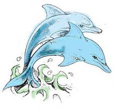 dolphin tattoos designs