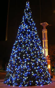 blue xmas lights