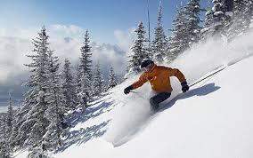 powder snow ski