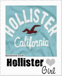 hollister stuff