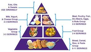 five food groups pyramid