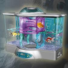 kids fish aquariums