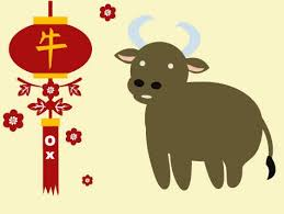 chinese new year year of ox