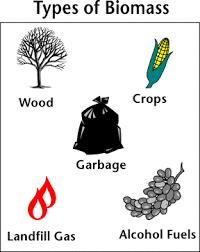alternative energy biomass