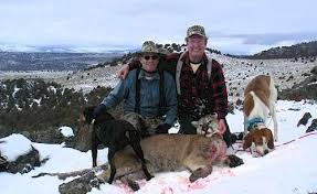 mountain lion hunting pictures