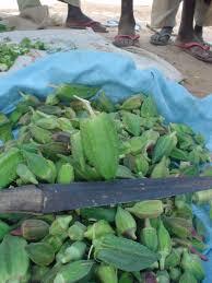 food in niger
