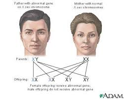 genetics heredity