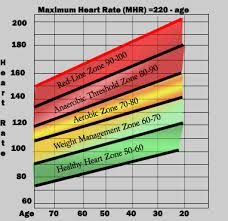 fitness heart rate chart