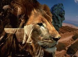 lion of judah photos