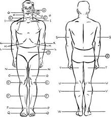 nerve pressure points