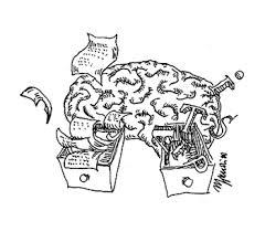 language in the brain