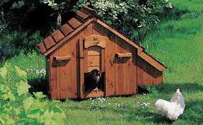 fowl houses