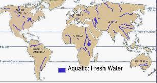 fresh water biome plants