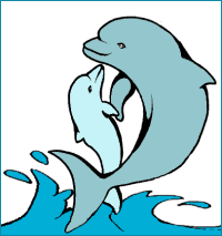 dolphins clipart