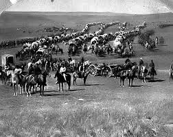 cavalry picture