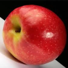 fotos apple