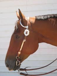bits horses
