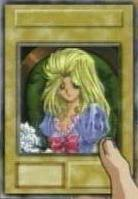 pegasus cards