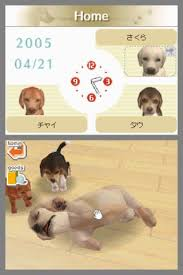 dogs for ds