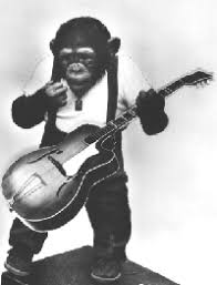 monkeys guitar