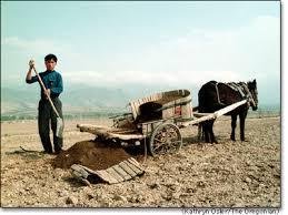 farmer in china