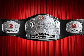 pro wrestling titles