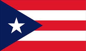 puerto rican schools