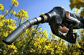 Biocarburants dans les Etats du Wisconsin, Tennessee et Texas : une politique volontariste adaptée