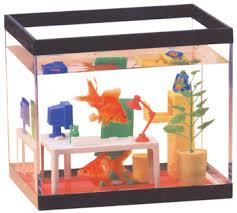 fish computer