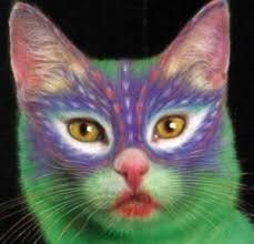 animal testing for makeup