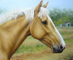 palomino paints for sale