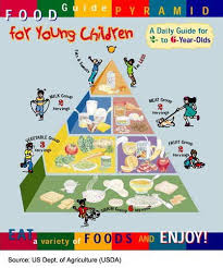 food guide pyramid for toddlers