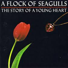 A Flock Of Seagulls - Story Of A Young Heart