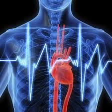 """heart attack%2Bprevent%2B %2Bcardio%2B %2Bcocktail Salute: cardiopatia ischemica, infarto miocardico e angina pectoris. Iniziativa """"per il Tuo cuore"""" 8   14 febbraio 2010"""