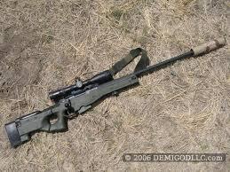 accuracy international aw 308
