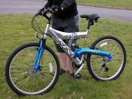 silverfox bike