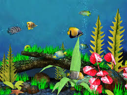 3d fish background
