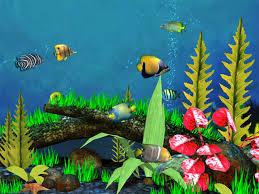 animated fish aquarium
