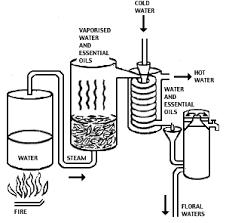 alcohol distillation