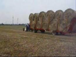 traktor ford 5000