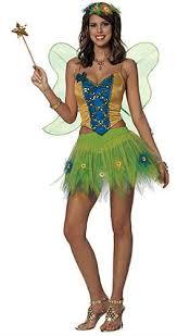 fairy costume adults